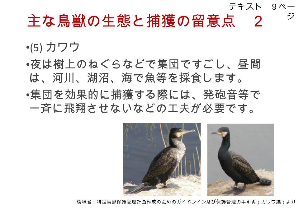 (5) カワウ 夜は樹上のねぐらなどで集団ですごし、昼間 は、河川、湖沼、海で魚等を採食します。 集団を効果的に捕獲する際には、発砲音等で 一斉に飛翔させないなどの工夫が必要です。 主な鳥獣の生態と捕獲の留意点 2 環境省:特定鳥獣保護管理計画作成のためのガイドライン及び保護管理の手引き(カワウ編)より テキスト 9ペー ジ