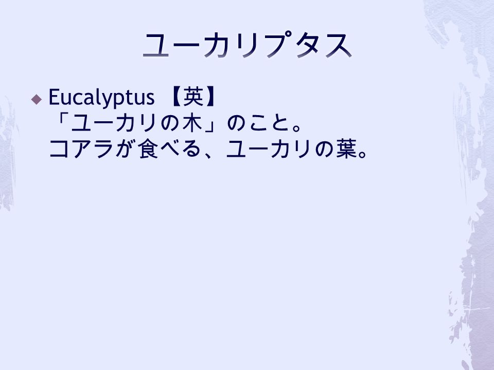  Eucalyptus 【英】 「ユーカリの木」のこと。 コアラが食べる、ユーカリの葉。