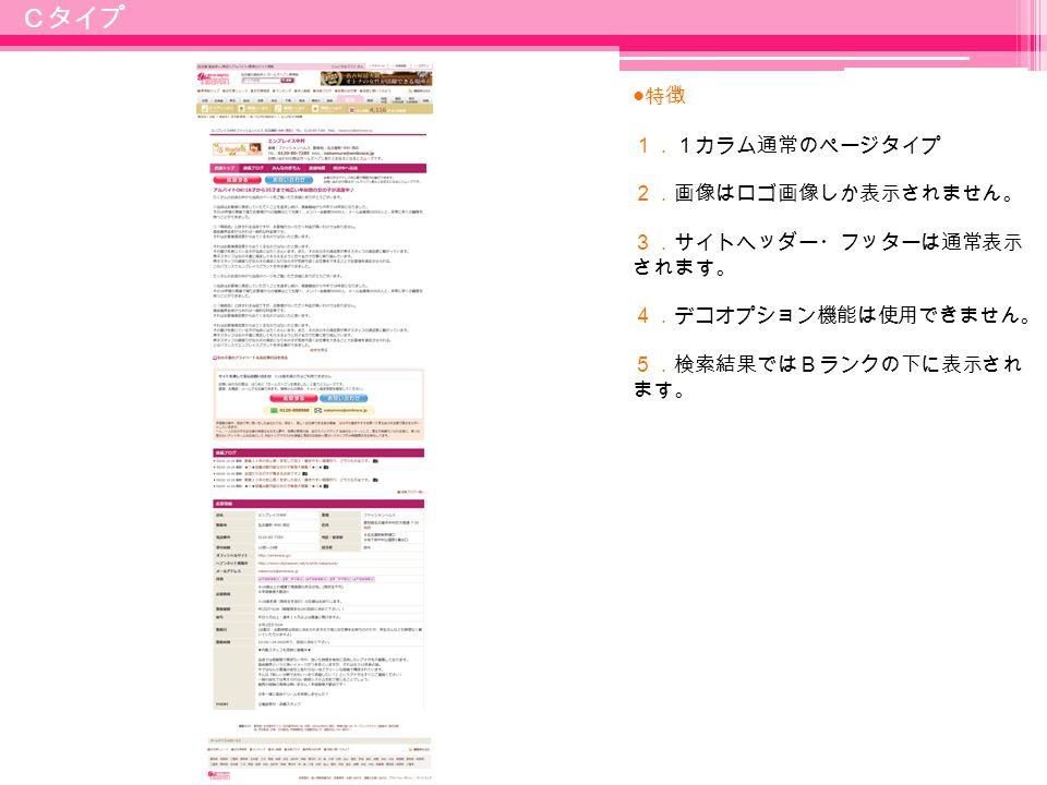 10 ● 特徴 1.1カラム通常のページタイプ 2.画像はロゴ画像しか表示されません。 3.サイトヘッダー・フッターは通常表示 されます。 4.デコオプション機能は使用できません。 5.検索結果ではBランクの下に表示され ます。 Cタイプ