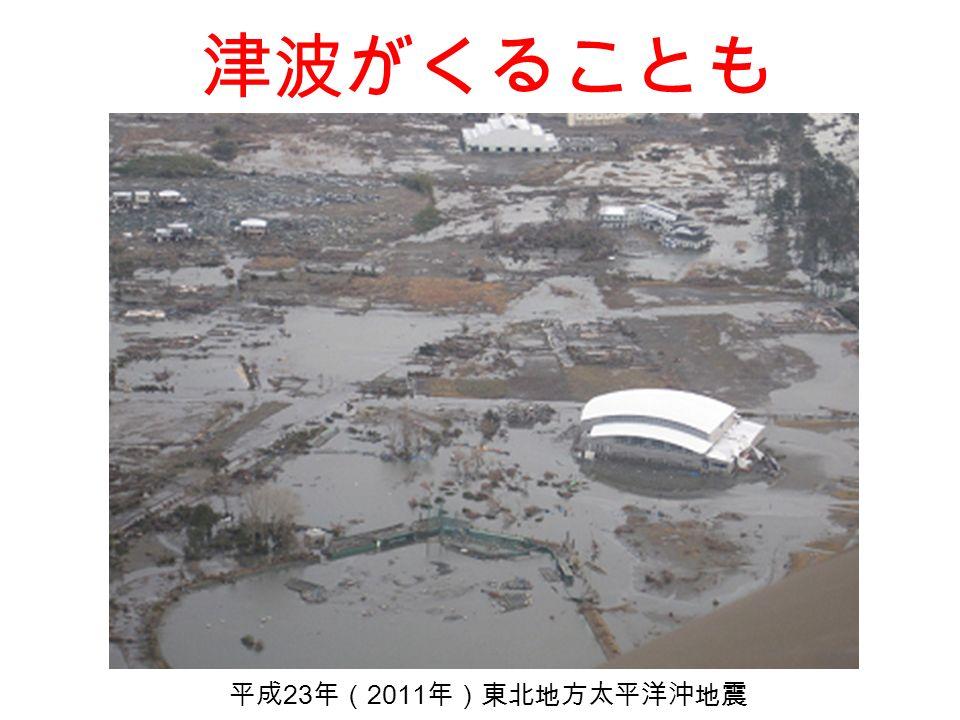 津波がくることも 平成 23 年( 2011 年)東北地方太平洋沖地震