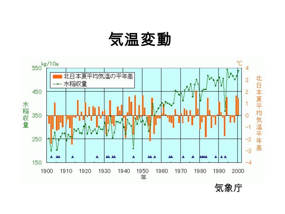 気温変動 気象庁